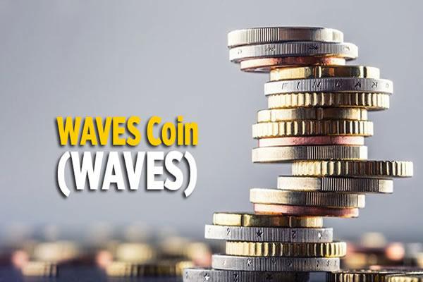 Waves Coin Nedir?